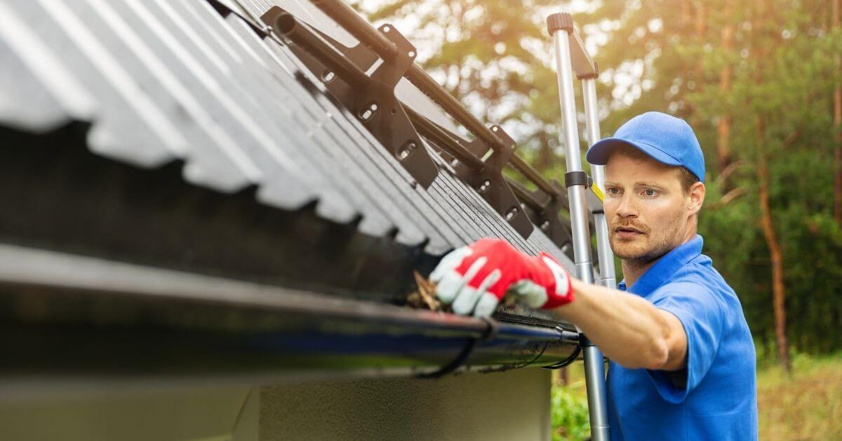 Tradie on a ladder cleaning a cutter, working near a solar system